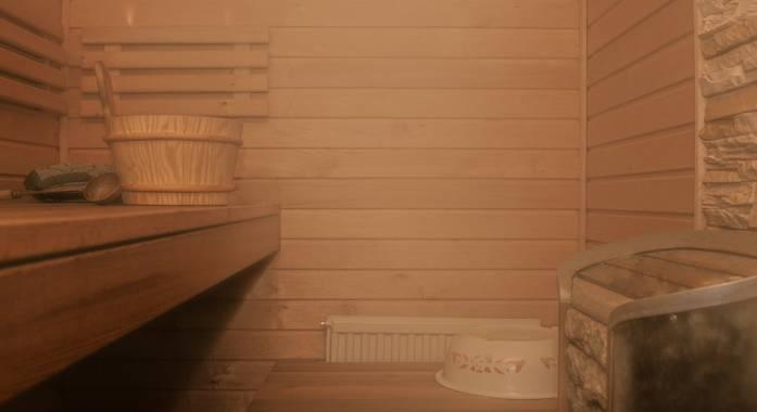w-saunie